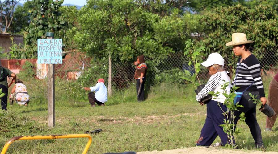 Mentiras, promesas y rechazo ensucian nuevo basurero en Oaxaca