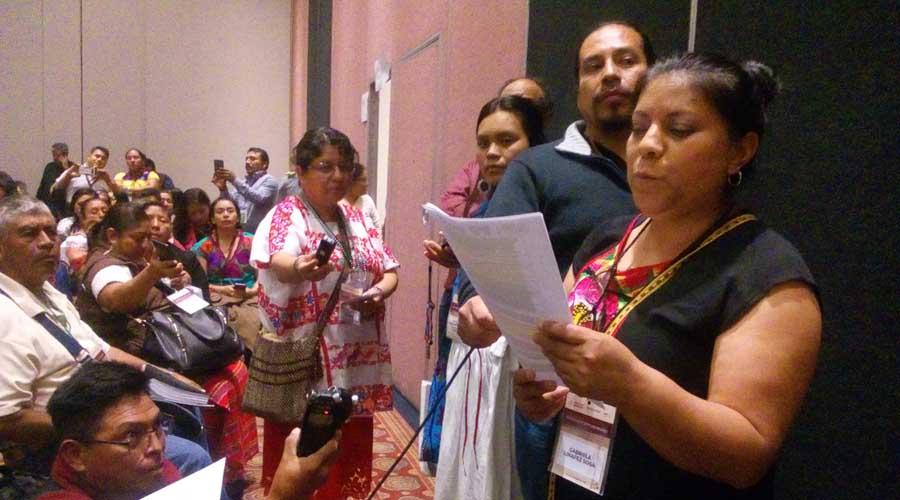 Indígenas y afromexicanas, en exigencia de sus derechos