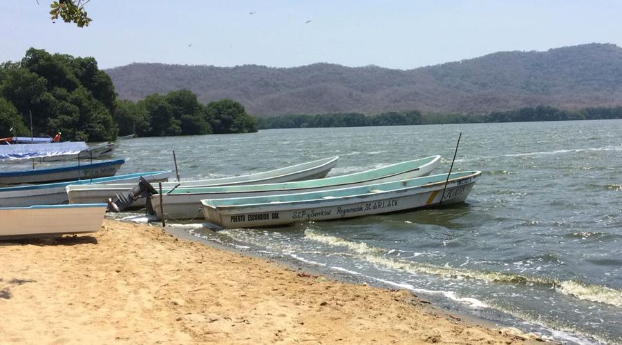 Viven lagunas de Corralero y Chacahua crisis ambiental | El Imparcial de Oaxaca