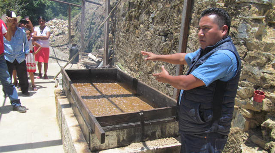 La caña, una planta multiusos en San Miguel Huautepec