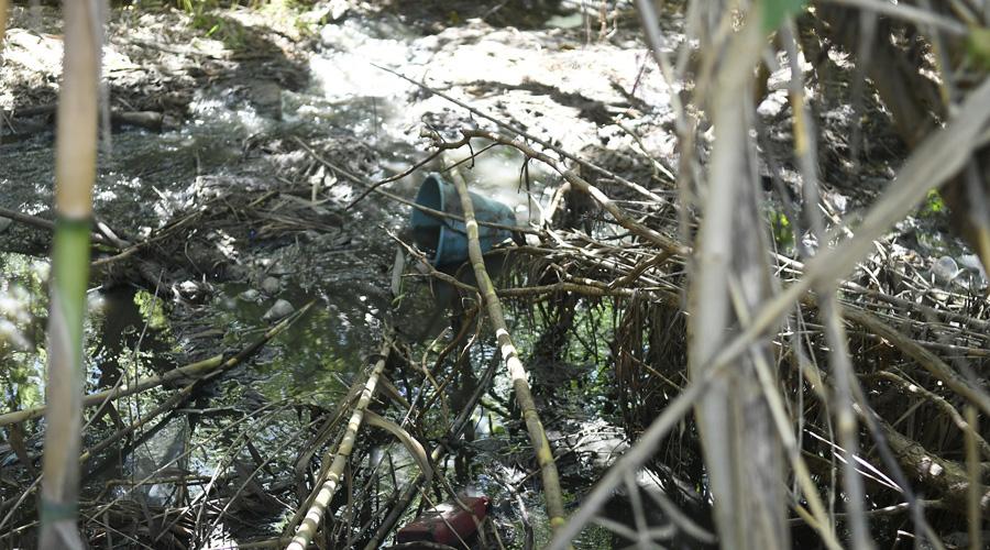 Comunidades de Oaxaca luchan por salvar el gigante contaminado