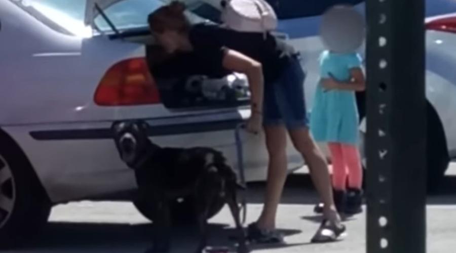 Video: Mujer maltrata a su perro ante negativa de sacrificarlo | El Imparcial de Oaxaca