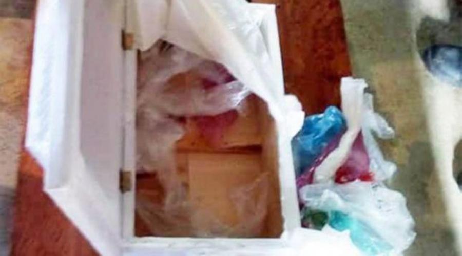 Hospital entrega ataúd de bebé sin el cuerpo; padres se dan cuenta en velorio | El Imparcial de Oaxaca