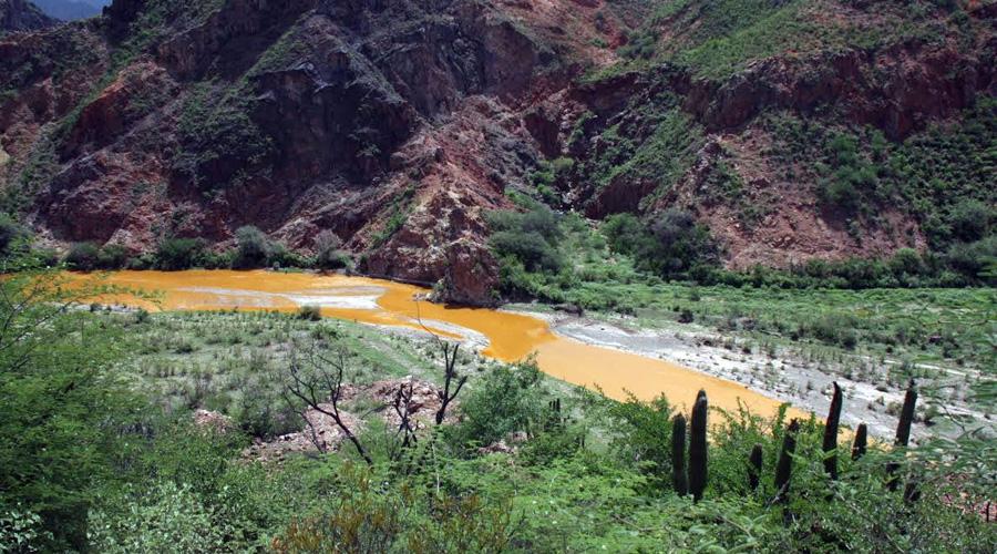 Cinco años de tragedia ambiental; derrame tóxico en río Sonora sigue causando estragos | El Imparcial de Oaxaca