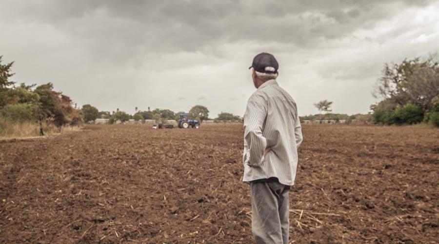 Trabajar la tierra para huir de la pobreza en Oaxaca