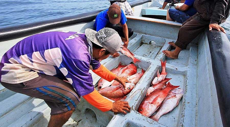 Lamentan falta de atención al sector pesquero ribereño   El Imparcial de Oaxaca