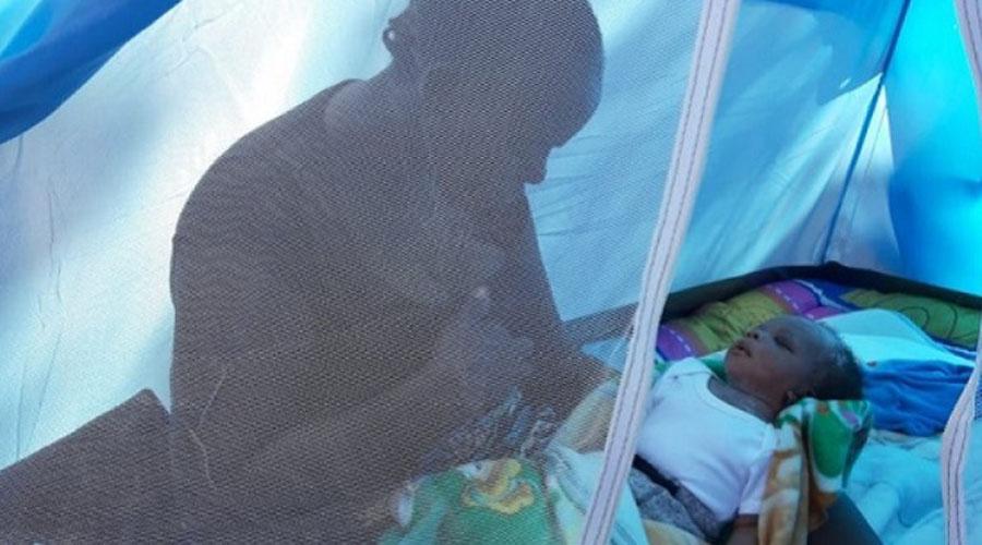 Migrantes africanos nombran a su bebé Andrés Manuel López Obrador | El Imparcial de Oaxaca