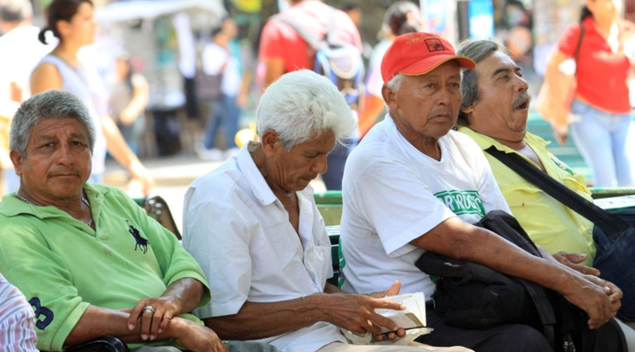 Adultos mayores trabajadores ganan poco y tienen pensiones que no alcanzan | El Imparcial de Oaxaca