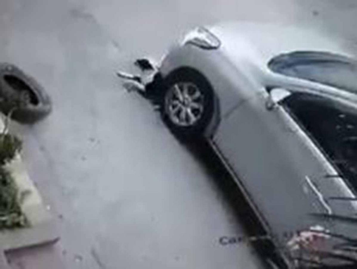 Video: Chofer de Uber atropella a perrita y huye | El Imparcial de Oaxaca