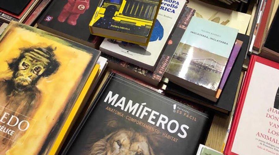 Nombran a biblioteca en honor al maestro Francisco Toledo