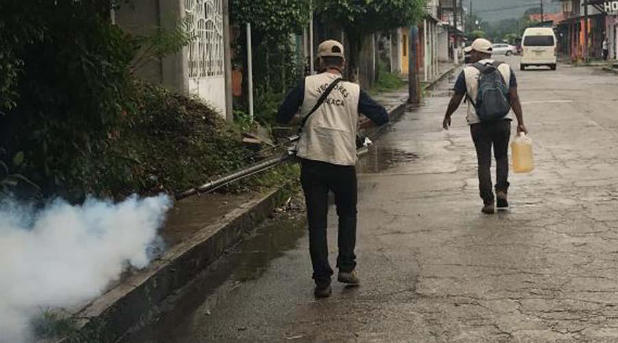 Piden continuidad a programas de prevención del dengue | El Imparcial de Oaxaca