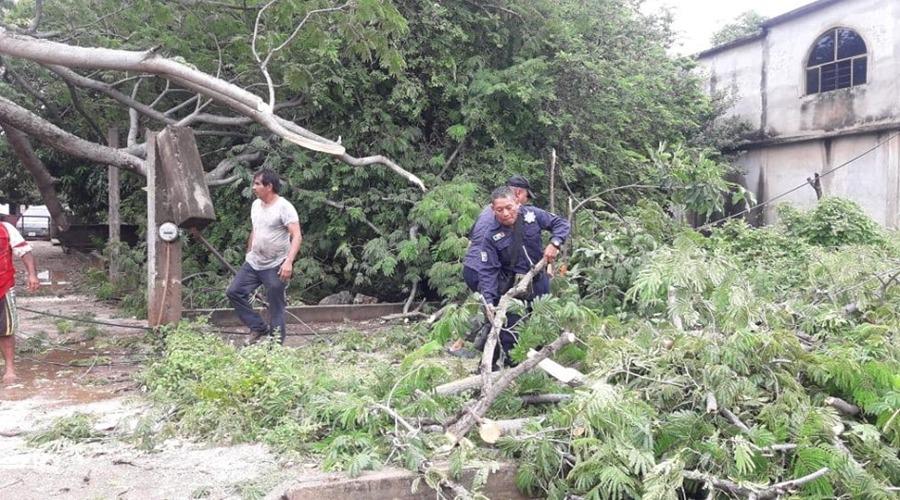 El recuento de los daños en el Istmo por Narda