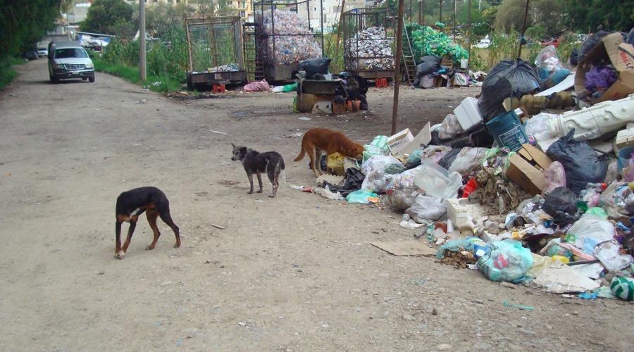 Exigen retirar el basurero municipal en colonia del Valle, Tlaxiaco