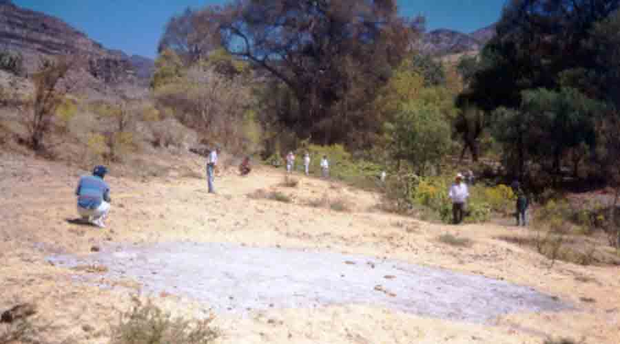Pierde la vida al caer en el cerro   El Imparcial de Oaxaca
