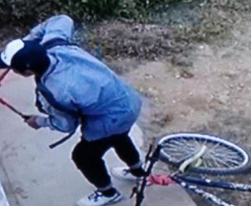 Identifican a presunto ladrón de domicilios