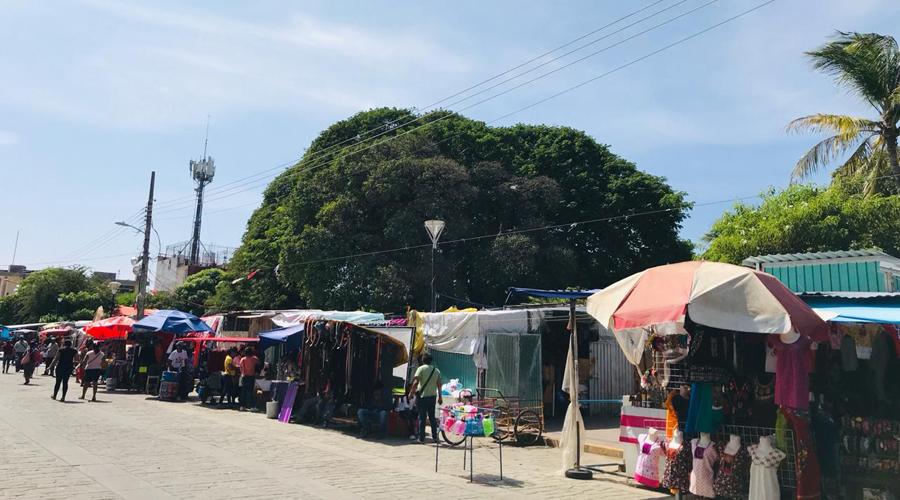 Locatarios reabrirán Mercado en Juchitán