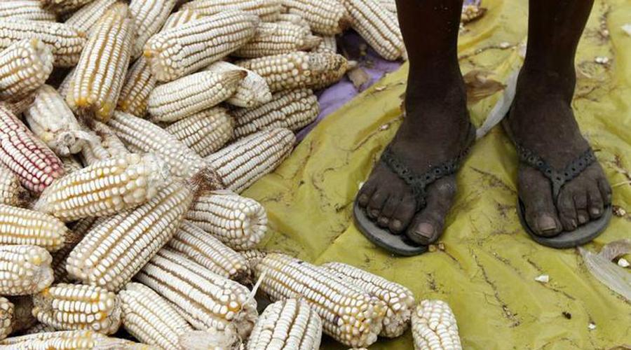 Acorrala pobreza extrema a afromexicanos