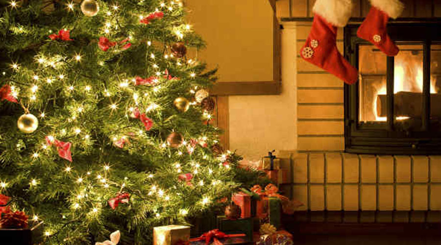 Elementos principales que no deben faltar en el árbol de navidad | El Imparcial de Oaxaca