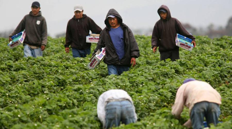 Pobreza y falta de trabajo, los motivos del éxodo