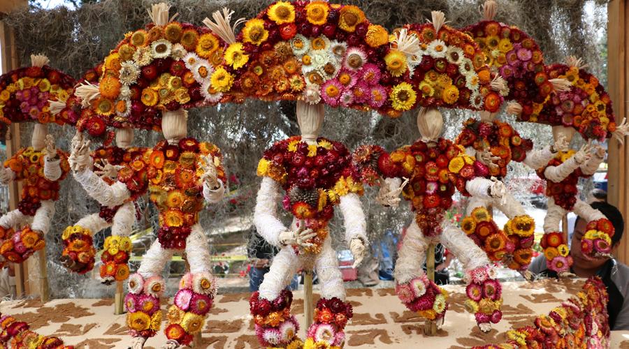 Flor Inmortal y totomoxtle adornan el Zócalo de Oaxaca