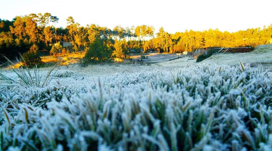 Frente frío 23 congela la Sierra de Oaxaca