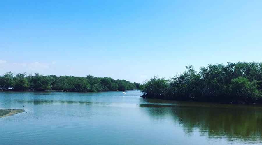 Alertan por Marea Roja en Pinotepa Nacional