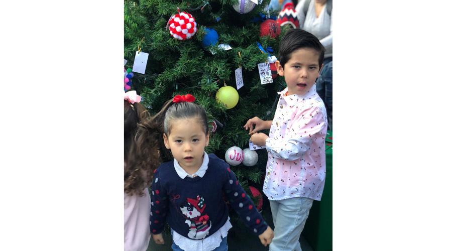 ¡A poner el arbolito de Navidad!