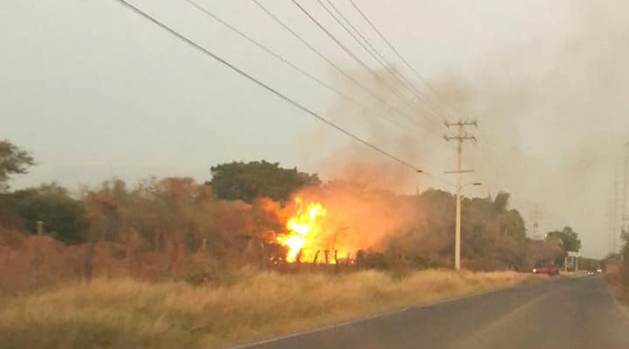 Campesinos suelen provocar incendios en la región del Istmo   El Imparcial de Oaxaca