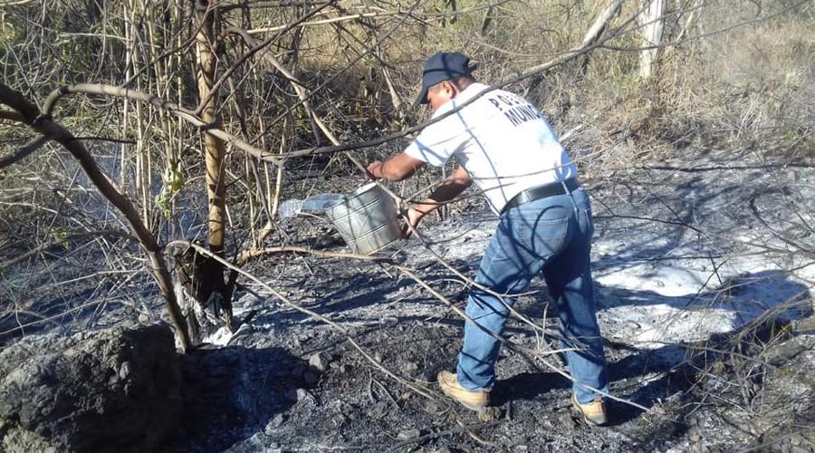 Aumento de incendios alarma a la población del Istmo de Oaxaca