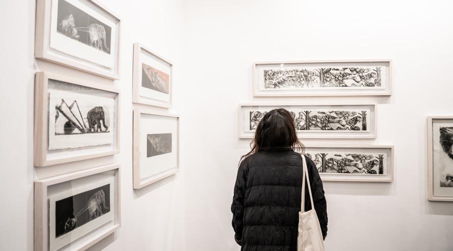 """Francisco Toledo, el artista explorador y """"de barrio"""""""