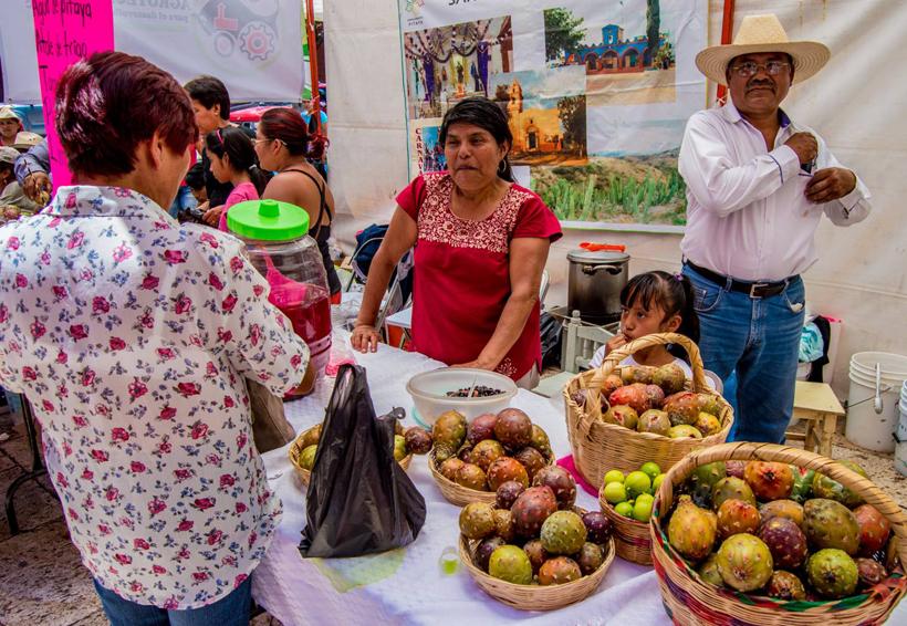 Desplazan a pitayeros de Tianguistengo por demanda del fruto | El Imparcial de Oaxaca