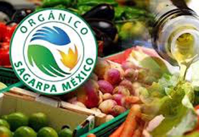 Impulsan la producción de orgánicos   El Imparcial de Oaxaca