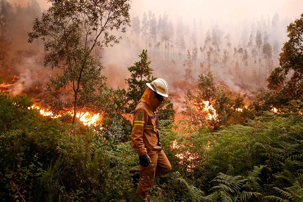 Clima complica incendio en Portugal; despliegan a más de 2 mil bomberos | El Imparcial de Oaxaca