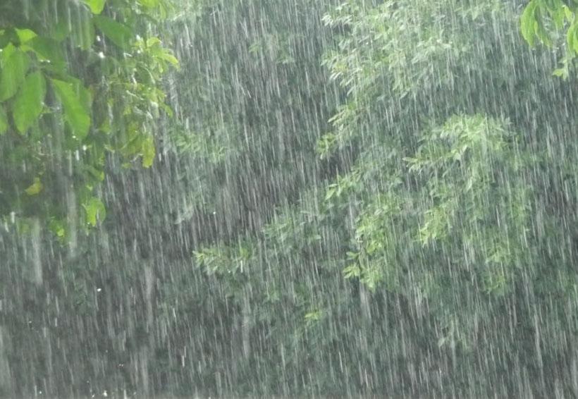 ¿NASA pronostica nuevo diluvio? Esto dicen sobre las futuras lluvias | El Imparcial de Oaxaca