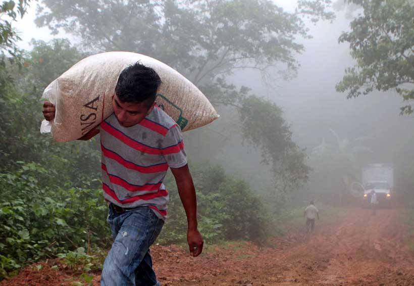 De 9 programas sociales Cué dejó funcionando uno | El Imparcial de Oaxaca