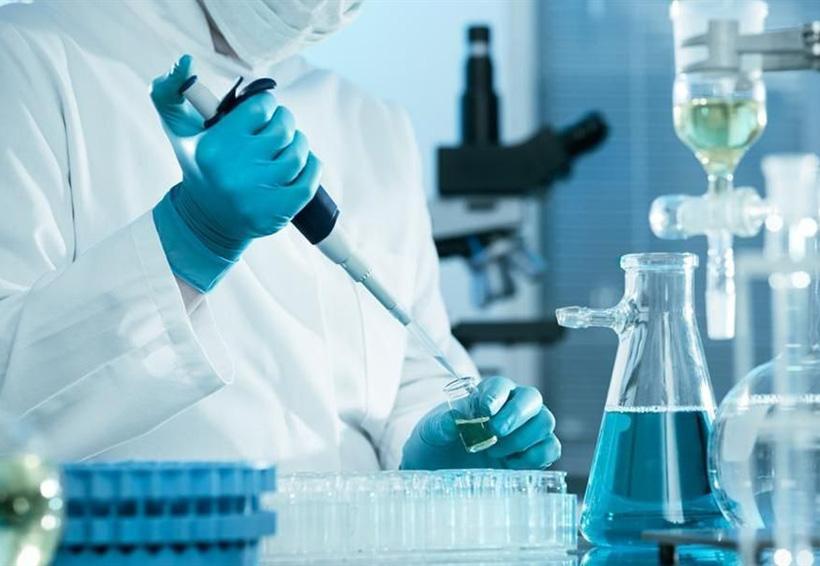 México será sede de la Semana Internacional de Ciencias y Buenas Prácticas Regulatorias | El Imparcial de Oaxaca