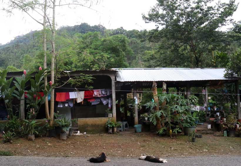 Los más pobres; los más desprotegidos en la Costa   El Imparcial de Oaxaca