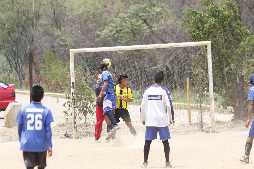 Los monarcas reciben su recompensa | El Imparcial de Oaxaca
