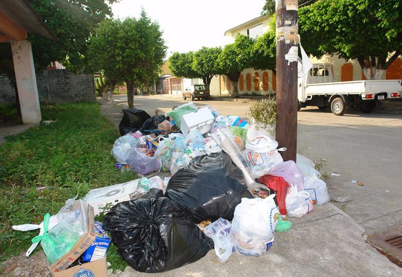 Fijan horario para la recolección de basura en Tuxtepec | El Imparcial de Oaxaca