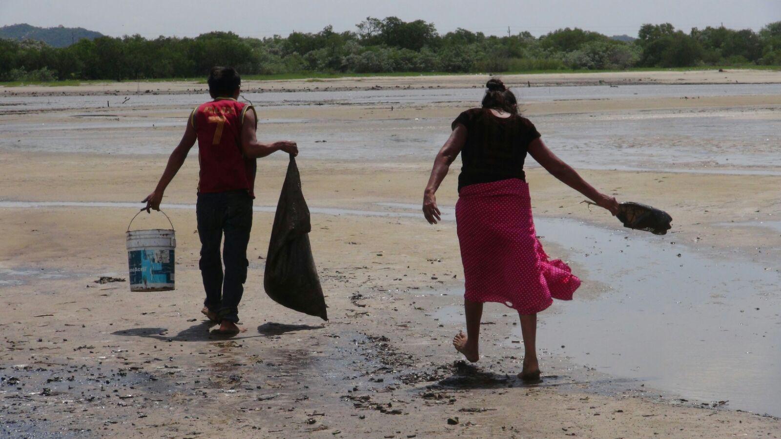 Severos daños en Boca del Río  y La Ventosa por derrame en Salina Cruz | El Imparcial de Oaxaca
