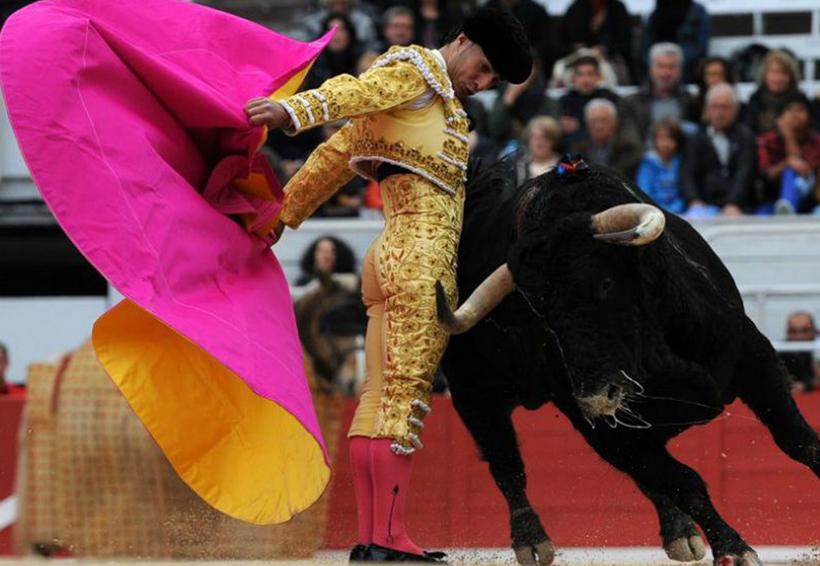 Muere por cornada el torero español Iván Fandiño   El Imparcial de Oaxaca
