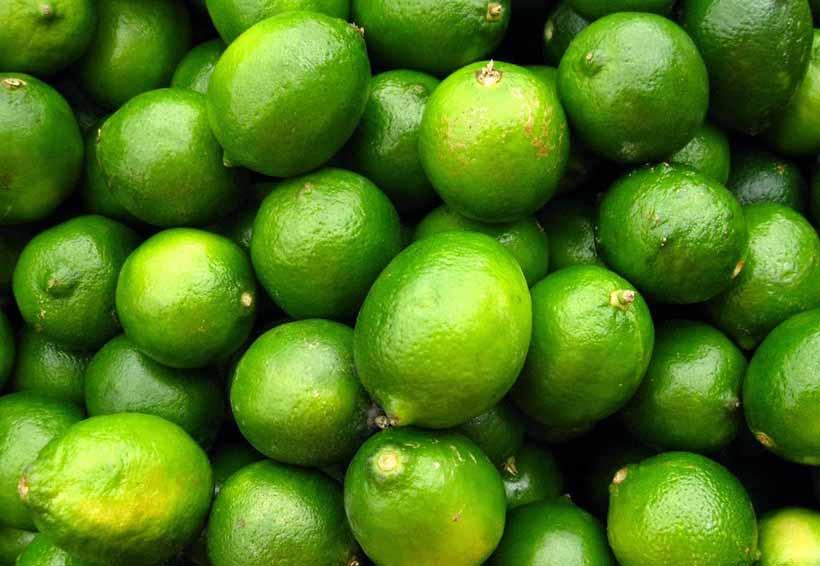 El Istmo, líder en mango y limón | El Imparcial de Oaxaca