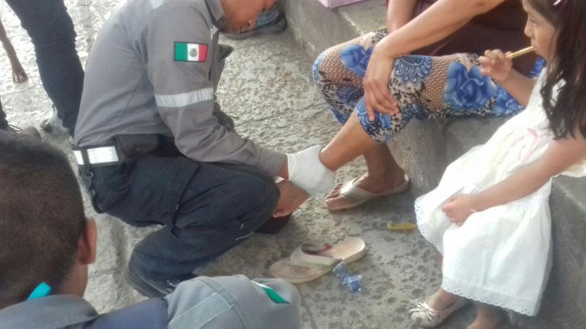 Ataca perro a mujer  frente a la Catedral en Oaxaca   El Imparcial de Oaxaca
