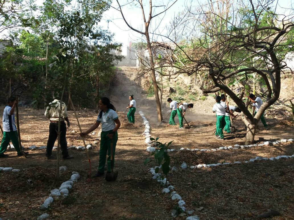 En el Istmo con reforestación dicen ¡Sí a la Vida! | El Imparcial de Oaxaca