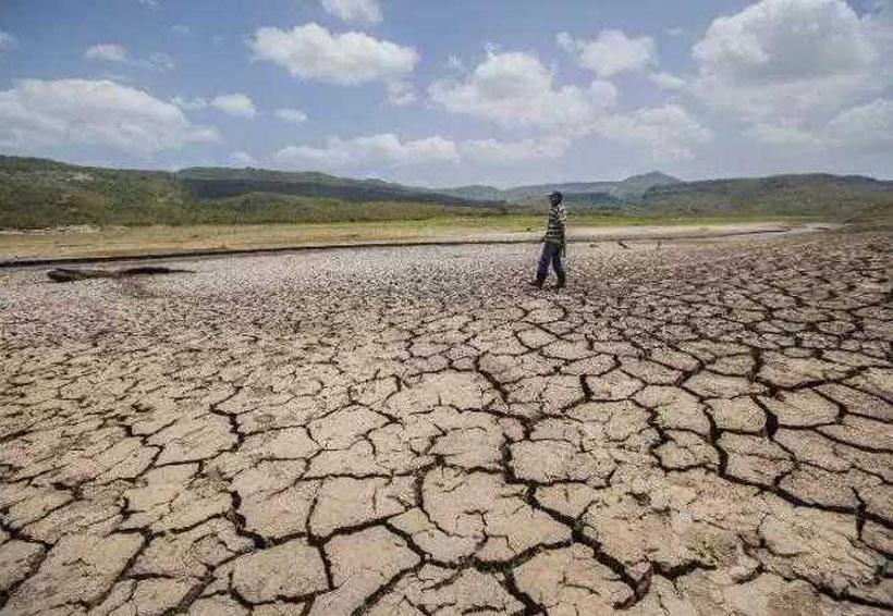 Desertificación y degradación de suelos en México, incrementan problemas sociales | El Imparcial de Oaxaca