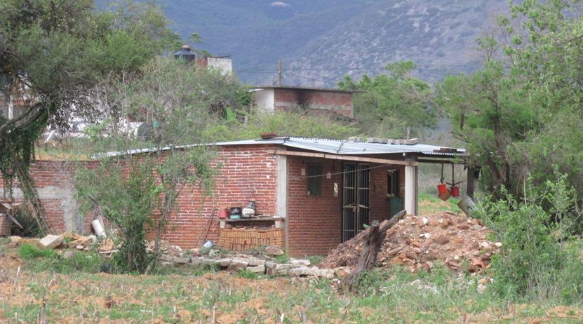 Hallan a campesino putrefacto en Yatareni | El Imparcial de Oaxaca