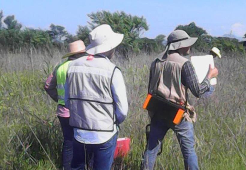 Exploran nuevos sitios para perforar pozos en el Istmo | El Imparcial de Oaxaca