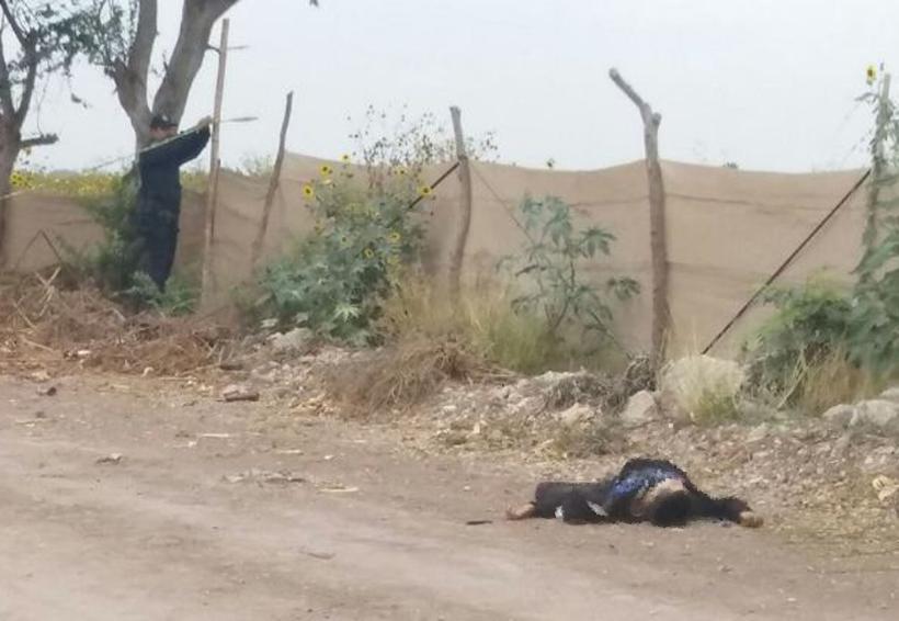 Encuentran a un muerto en un camino | El Imparcial de Oaxaca