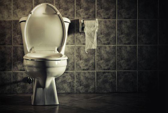 Por no leer las condiciones, aceptan lavar baños públicos por el uso de Wi-Fi gratis | El Imparcial de Oaxaca
