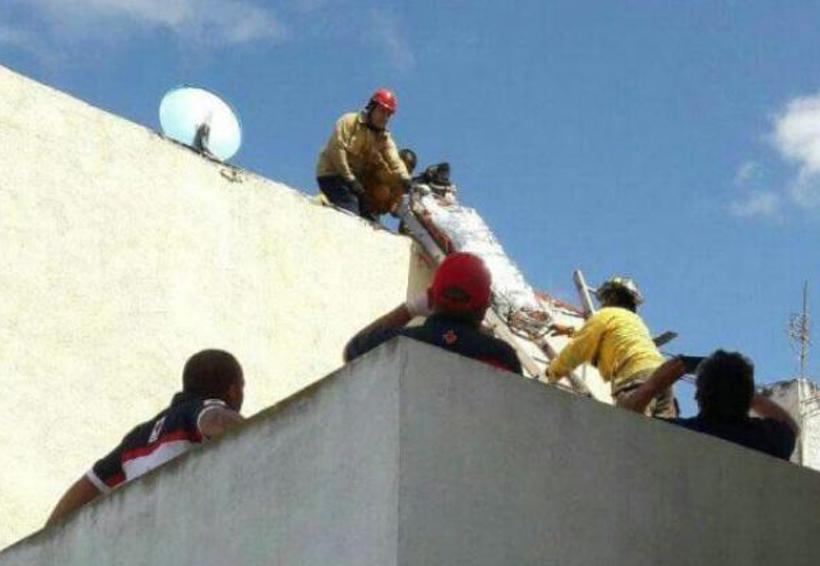 Pierde la vida al tocar cables de alta tensión | El Imparcial de Oaxaca